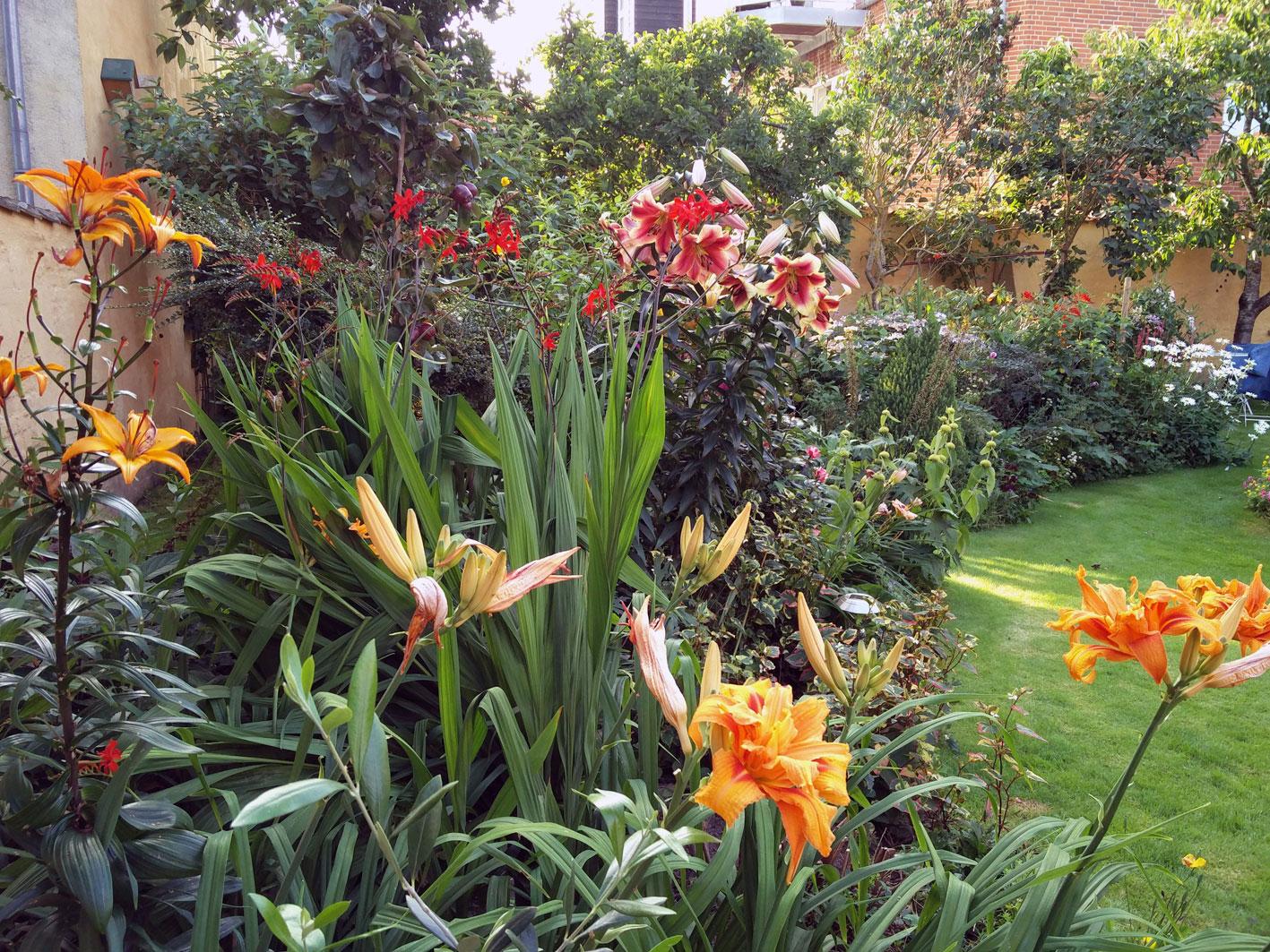Smuk have uden meget arbejde